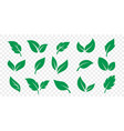 green leaf icons set on white background vector image
