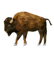 isolated low poly bison and reflection with white vector image vector image
