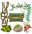 set of jungle element vector image