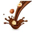 splash chocolate with hazelnuts vector image vector image