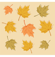 Abstract autumn background with colorful leaves vector image vector image