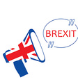 Brexit megaphone vector image vector image