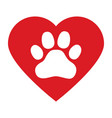 dog paw in red heart on white background vector image