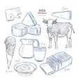 hand drawn sketch dairy products set vector image vector image