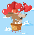 happy valentines day couple dogs in hot air vector image