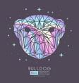 holographic polygonal tirangle animal dog vector image