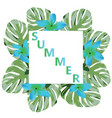 palm leaves summer time vector image vector image
