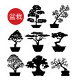 set black and white bonsai trees vector image