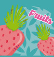 strawberries fresh and delicious fruit vector image
