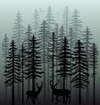 Winter forest with pine trees vector image