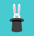 magical rabbit in hat in vector image vector image