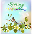 spring all wakes up flowers sakura vector image vector image