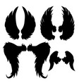 wings silhouettes drawing black white set 2 vector image vector image