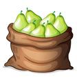 A sack of green avocado vector image vector image