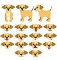 Funny dogs expressing emotions big set vector image vector image