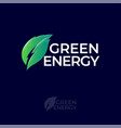 green energy logo leaf with energy symbol vector image