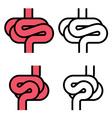 intestines simple symbol vector image vector image