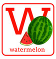 an alphabet with cute fruits letter w watermelon vector image vector image
