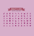 beauty and spa glyph icon set vector image
