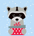 christmas card portrait raccoon with gift box vector image