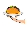 hand holding taco mexican fast food menu vector image vector image