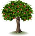 red apple on apple tree vector image