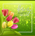 spring text with tulip flower vector image