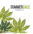 summer sale background with green tropical exotic vector image vector image