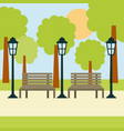 two benches street lamp and tree sun landscape vector image