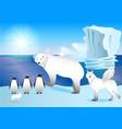 arctic animals on shore ocean