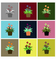 assembly flat icons geranium vector image vector image