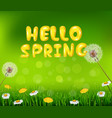 beautiful spring or summer season nature backgroun vector image
