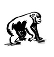chimpanzee vector image