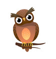 cute owl bird with big eyes stay on tree vector image vector image