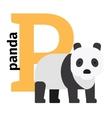 English animals zoo alphabet letter P vector image
