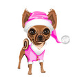 little dog in a pink santa claus hat vector image