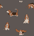 seamless pattern with basset hound dog vector image vector image