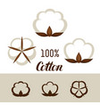 set cotton icons emblems for clothing and vector image