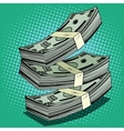 Stack of money dollar bills cash vector image