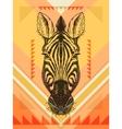 with zebra head vector image