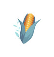 cartoon corn cob with green leaves vector image