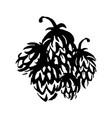 hand drawn hop emblem icon label logo vector image vector image