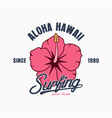 hawaii surf vector image vector image