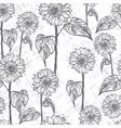 ink hand drawn seamless pattern with sunflowers vector image