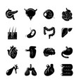 internal human organs icons set simple style vector image vector image