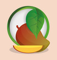 mango with leaves natural badge vector image vector image