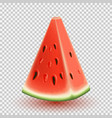 realistic ripe watermelon slice template vector image