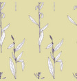 seamless pattern with drawing herbs and flowers vector image
