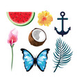 set tropical fruits with flowers and butterfly vector image