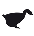 Silhouette goose vector image